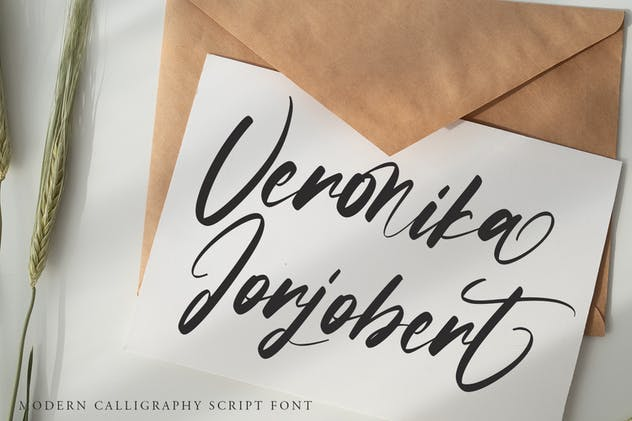 Sobriquet - Modern Calligraphy Font - product preview 1