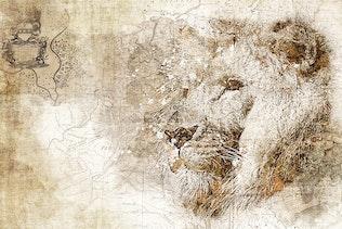 Thumbnail for Piratum - Map Art Photoshop Action