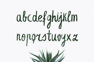 Thumbnail for Leafy Extended Brush Font