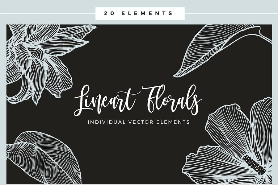 Lineart Floral Patterns & Elements - product preview 8