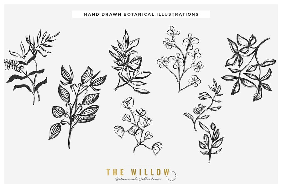 The Willow Graphic Collection - product preview 3