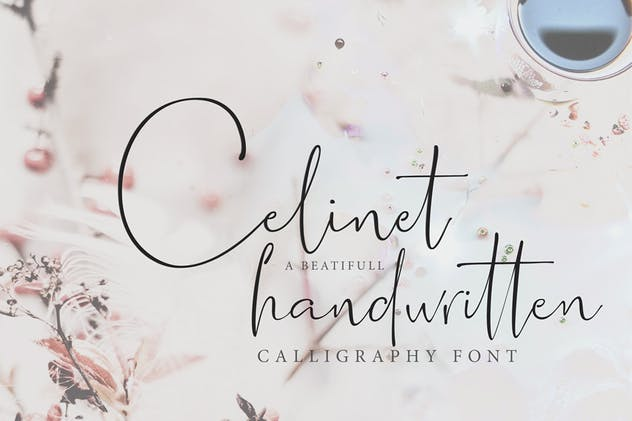 Celinet / Script Font - product preview 3