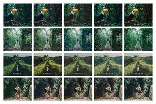 Thumbnail for 20 Jungle Lightroom Presets and LUTs