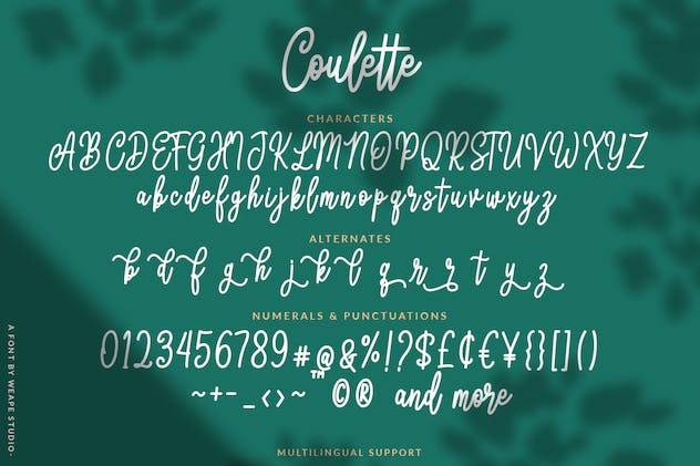 Coulette Handwritten Script - product preview 0