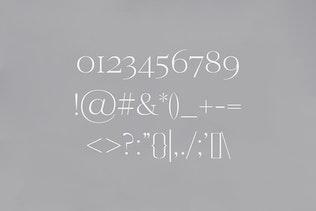 Миниатюра для Семейство современных шрифтов с С засечками дью Wensley