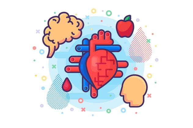Medical Biology - Human Heart Organ - product preview 1