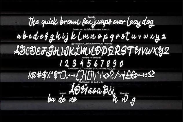 Matody | Unique Typeface Script