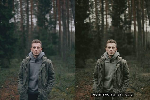 20 Moody Woods Lightroom Presets & LUTs - product preview 7