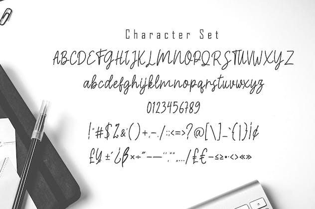Magelius - Monoline Script Font - product preview 5