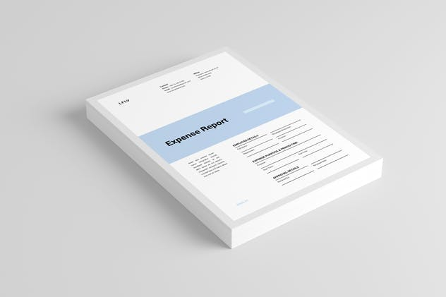 Expense Report - product preview 2