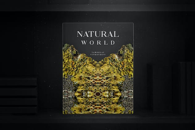 Natural Fractals and Compositions - product preview 7