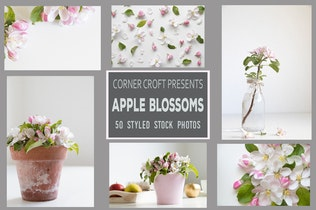 Thumbnail for Apple Blossom Styled Stock Photo Bundle