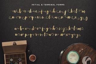 Thumbnail for Maloishe Brush Script Font