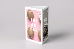 Triangle A5 Brochure Stand Mock-up