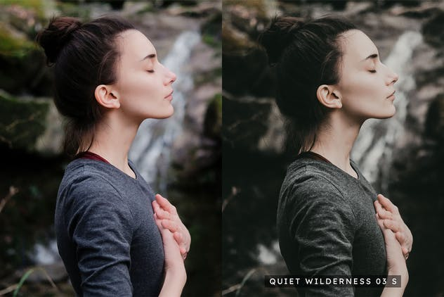 20 Moody Woods Lightroom Presets & LUTs - product preview 5