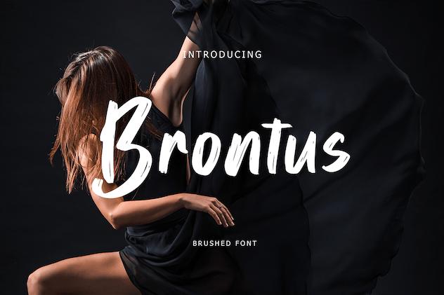 Brontus Brush Font - product preview 5