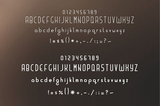 Thumbnail for Liner| font for logos with frames