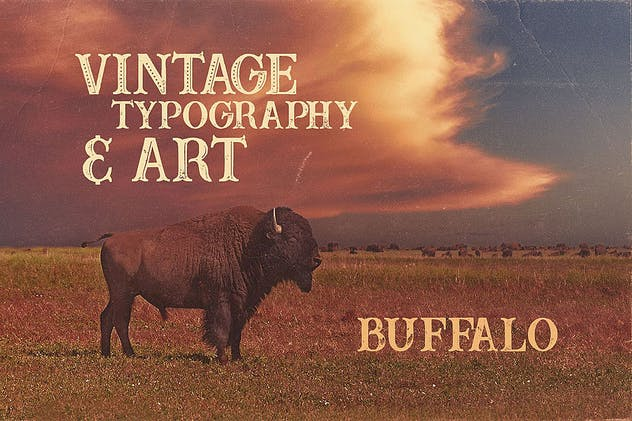 Buffalo Typeface - product preview 2