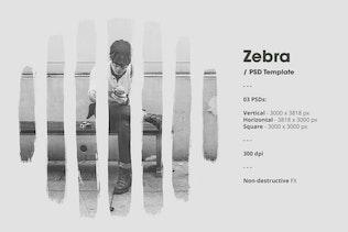 Thumbnail for Zebra