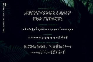 Amazon - Script élégant