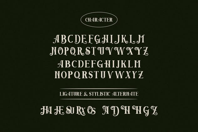 Angwie Serif Art Font - product preview 7