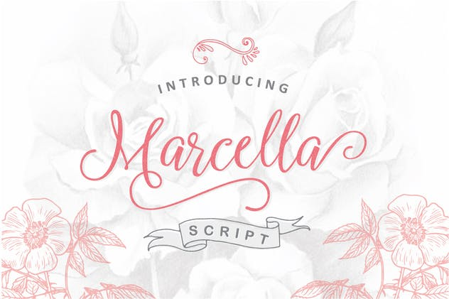Marcella Script - product preview 4