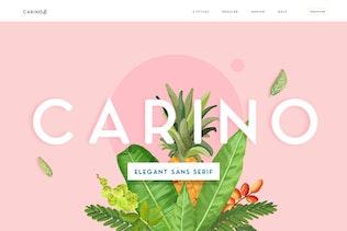 Thumbnail for Carino - A Modern Elegant Typeface