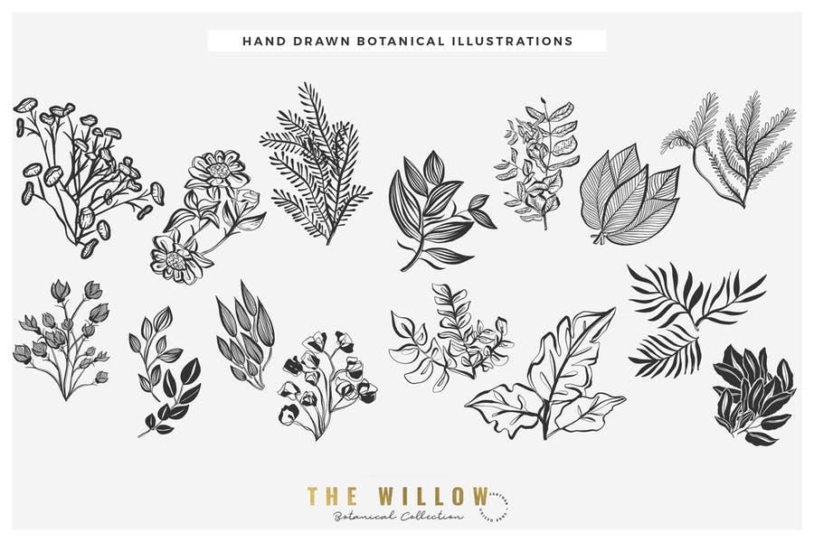 The Willow Graphic Collection - product preview 2