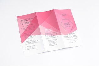 Thumbnail for Tri-Fold Brochure / Flyer Mock-up's V.2