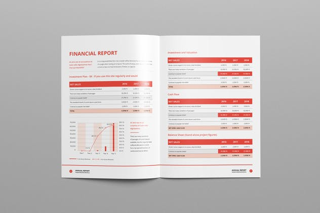 Annual Report A4 & Us Letter - product preview 11