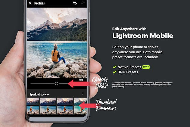 20 Wilderness Lightroom Presets & LUTs - product preview 3