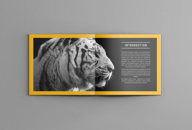 Photography Portofolio Templates - product preview 3