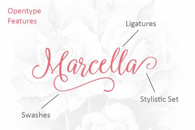 Marcella Script - product preview 2