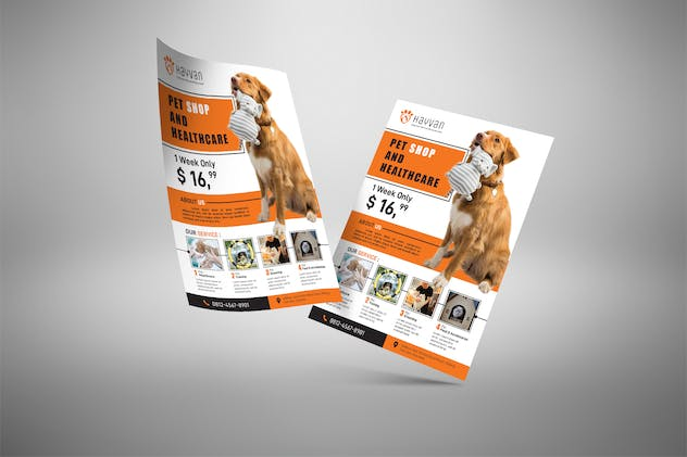 Pet Shop - Petcare Flyer Poster