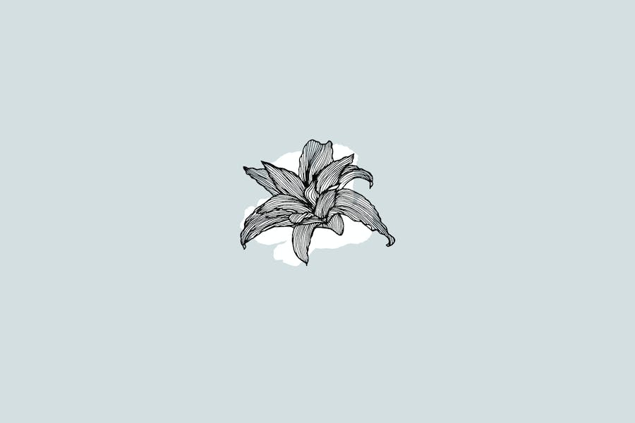 Lineart Floral Patterns & Elements - product preview 4