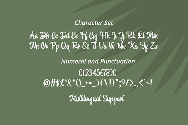 Orange Melon Script Font - product preview 8