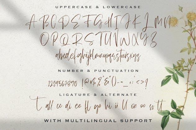 Sellviny Queen - Handwritten Font - product preview 1