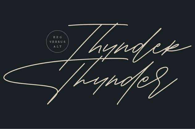 Shaloems Handwritten Signature Font - product preview 5