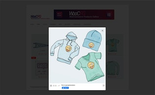 Thumbnail for WooCommerce Products Gallery for Elementor