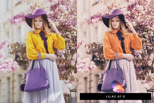 50 Tranquil Purple Lightroom Presets and LUTs