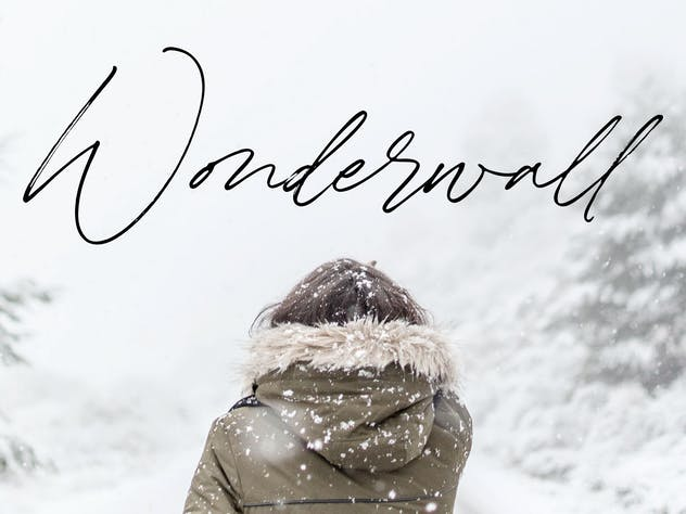 Winterlady YH - Luxury Script Font - product preview 4