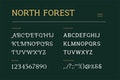 North Forest Vintage Serif Font