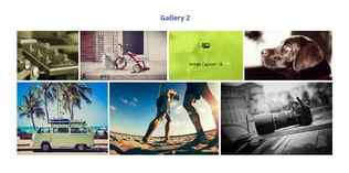Thumbnail for Fast Gallery Mosaic for Elementor WordPress Plugin