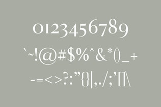 Thumbnail for Aadam A Modern Serif Fonts Family