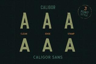 Miniature pour CALIGOR - Police d'affichage