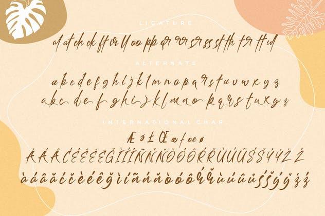 Bathersilla Brush Handwritten