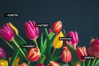 Технические характеристики - Пользовательские меры и метки (Photoshop 2021)