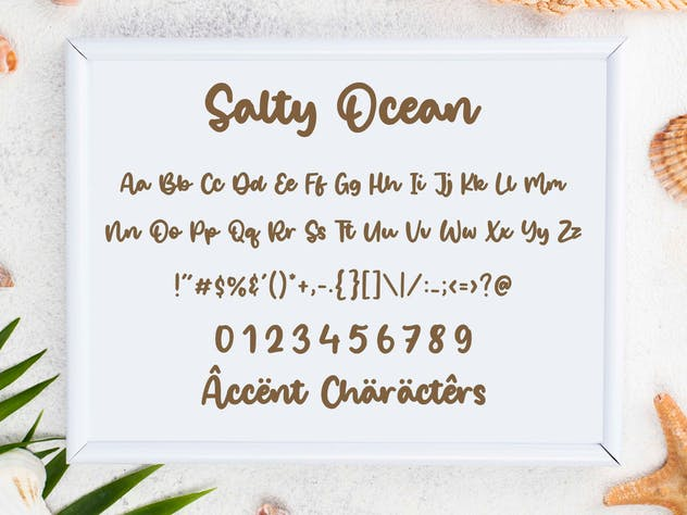 Salty Ocean - Bold Brush Font - product preview 1