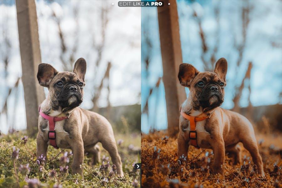 Edit Like A PRO 13th - Photoshop & Lightroom