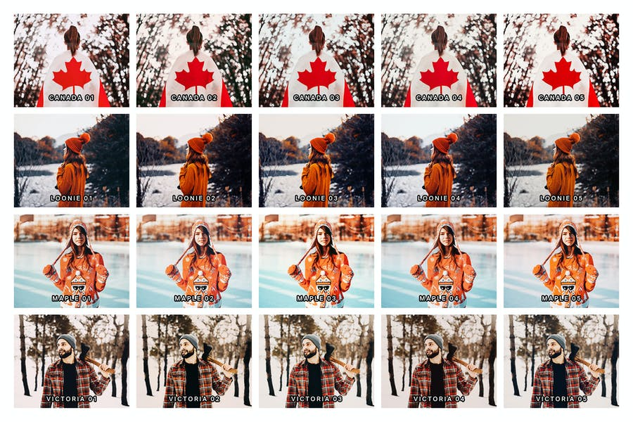 20 Canadian Lightroom Presets and LUTs